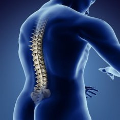 '1 Spine-Passion-sciatica- BackPain'